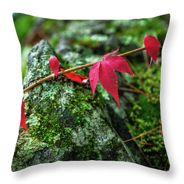 Throw Pillow featuring the photograph Red Vine by Bill Pevlor