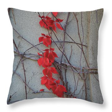 Red Vines Throw Pillow