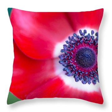 Red White Blue Anemone Throw Pillow