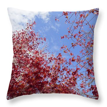 Throw Pillow featuring the photograph Red White Blue Colors Of The Nature by Jingjits Photography