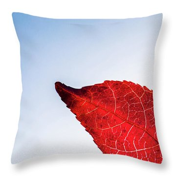 Throw Pillow featuring the photograph Red White  Blue by Jingjits Photography