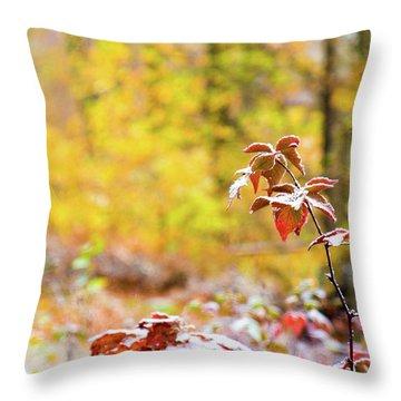 Red, White, Yellow Throw Pillow