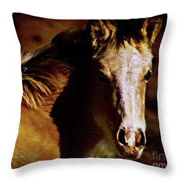 Red Willow Pony Lx Throw Pillow