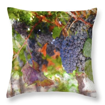 Red Wine Grapes On The Vine In Wine Country Throw Pillow