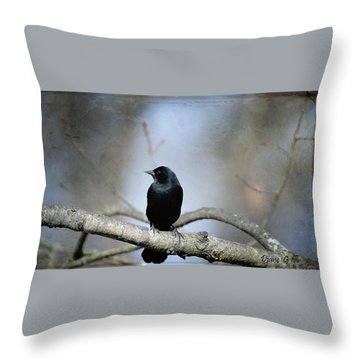 Red-winged Blackbird Throw Pillow by Diane Giurco