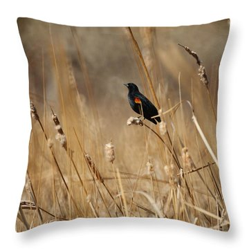Red Winged Blackbird Throw Pillow by Ernie Echols