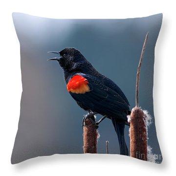 Red-winged Blackbird Singing Throw Pillow