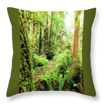 Red Woods Trail Throw Pillow