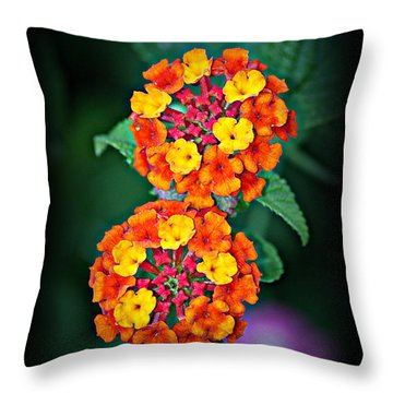 Red Yellow And Orange Lantana Throw Pillow by KayeCee Spain