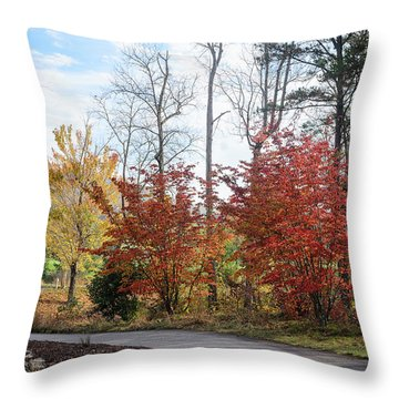 Red Yellow Path Throw Pillow