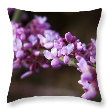 Throw Pillow featuring the photograph Redbuds In March by Jeff Severson