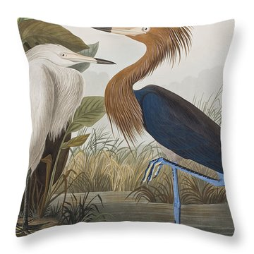 Reddish Egret Throw Pillow by John James Audubon