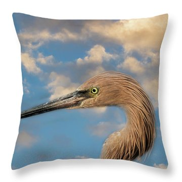 Throw Pillow featuring the photograph Reddish Egret by Kim Hojnacki