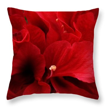 Redreamer Throw Pillow