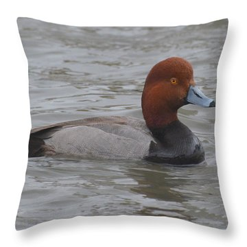 Redhead Throw Pillow by Dan Williams