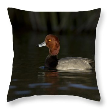 Redhead Out Of The Shadows Throw Pillow