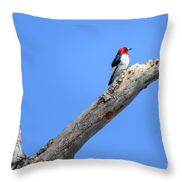 Redheaded Woodpecker On A Dead Tree Throw Pillow