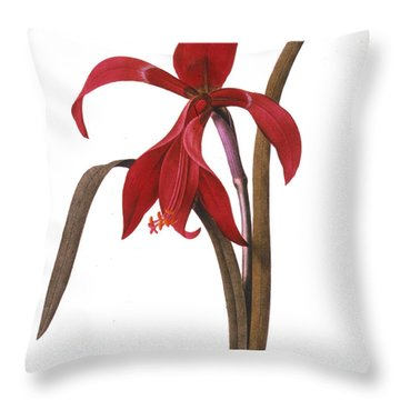 Redout�: St. James Lily Throw Pillow by Granger