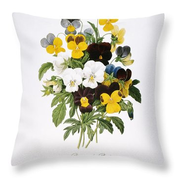 Redoute: Pansy, 1833 Throw Pillow by Granger