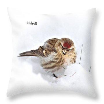 Redpoll Throw Pillow