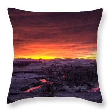 Redwater Throw Pillow