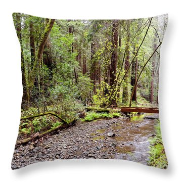 Redwood Creek Flowing Through Muir Woods National Monument - Mill Valley Marin County California Throw Pillow