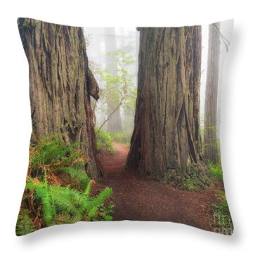 Redwood Trail Throw Pillow