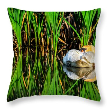 Reed Rest Throw Pillow