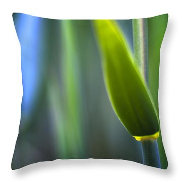 Reed Throw Pillow by Silke Magino