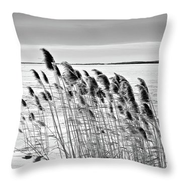 Reeds On A Frozen Lake Throw Pillow