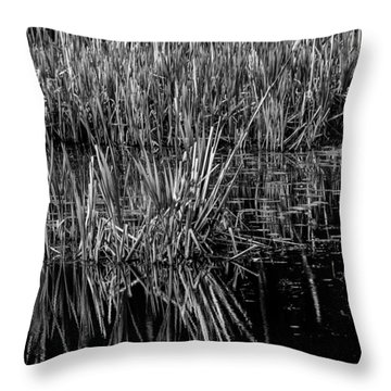 Reeds Reflection  Throw Pillow