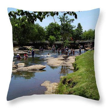 Reedy River Throw Pillow by Flavia Westerwelle