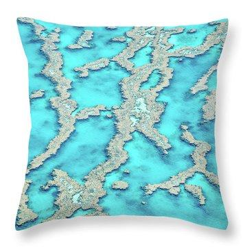 Reef Patterns Throw Pillow