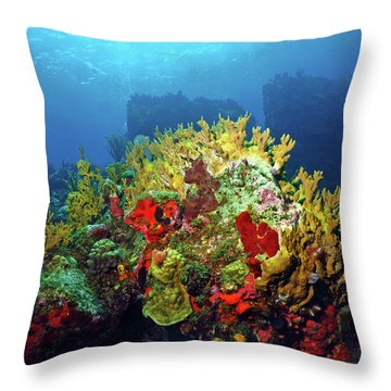 Reef Scene With Divers Bubbles Throw Pillow