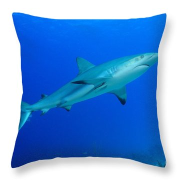 Out Of The Blue Throw Pillow by Aaron Whittemore