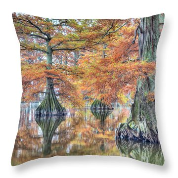 Reelfoot Lake 2015 05-2 Throw Pillow
