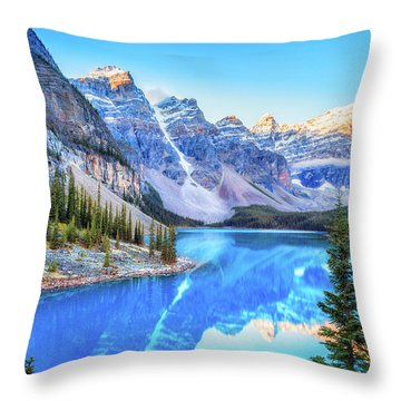 Reflect On Nature Throw Pillow by James Heckt