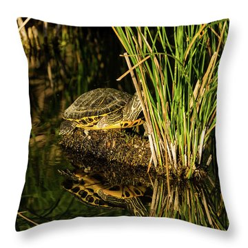 Reflect This Throw Pillow