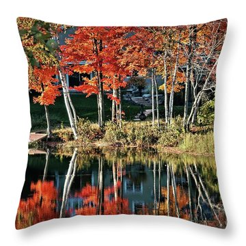 Reflected Beauty Throw Pillow by Aimelle