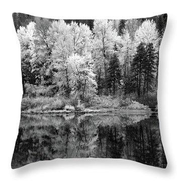 Reflected Glories Throw Pillow