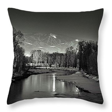 Reflected Grooming Throw Pillow by Matt Helm