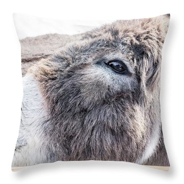 Reflected In His Eye Throw Pillow
