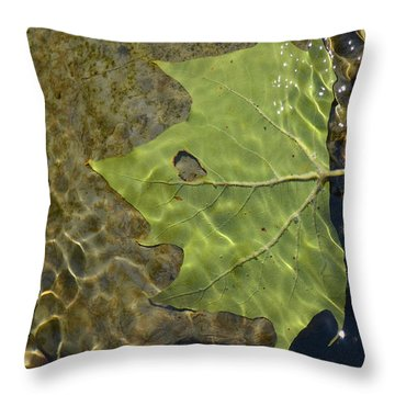 Reflected Indignation Throw Pillow