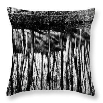 Reflected Landscape Patterns Throw Pillow by Carol F Austin