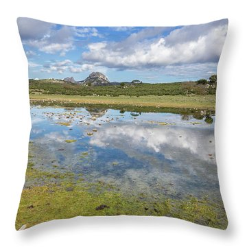 Reflected Mountains Throw Pillow