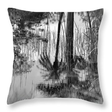 Reflected Palms Throw Pillow
