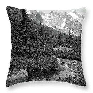 Reflected Pine Throw Pillow