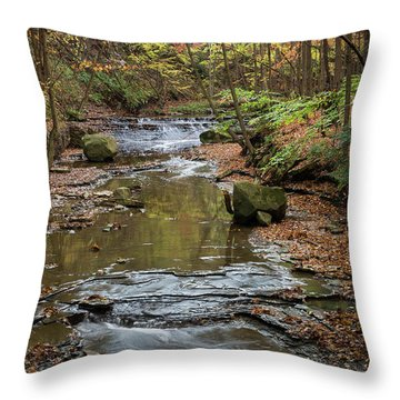 Throw Pillow featuring the photograph Reflecting Autumn by Dale Kincaid