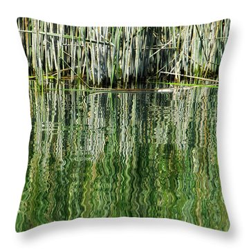 Reflecting Back Throw Pillow by Donna Blackhall