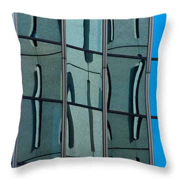 Throw Pillow featuring the photograph Reflecting Eagle 1 by Werner Padarin